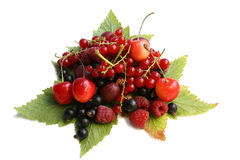 Forest berries on the leaves Royalty Free Stock Photography