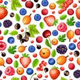 Forest Berries Seamless Pattern mûr coloré Photographie stock libre de droits