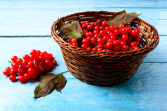 Forest berries in wicker basket on blue wooden table Stock Photography