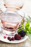 Forest berry tea Stock Photography