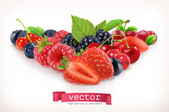 Forest berry. Vector illustration  on white Stock Photography