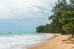 Forest besides a beach on rainy day in Phuket, Thailand Royalty Free Stock Photo