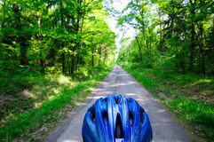Forest Bike Path Royalty Free Stock Image