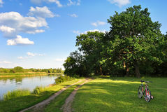 Forest bike path on the meadow on the banks of the river. Forest bike path on the meadow near the oak grove on the banks of the river Stock Photos