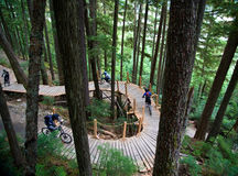 Forest Bike Trail. Mountain bikers ride a winding bridge on a trail through a forest Royalty Free Stock Images