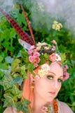 Forest Blossoms e sonhos feericamente fotos de stock royalty free