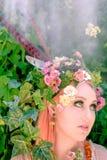 Forest Blossoms e sonhos feericamente fotografia de stock royalty free