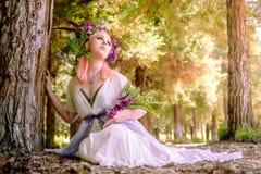 Forest Blossoms e sonhos feericamente foto de stock royalty free
