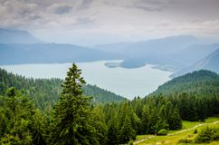 Forest and Body of Water Photograph Stock Images