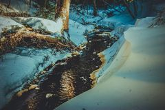 Forest breaks a path through the snow and ice. The river flows into a winter lake, but this is not where its way ends royalty free stock image