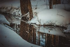 Forest breaks a path through the snow and ice. The river flows into a winter lake, but this is not where its way ends royalty free stock photos