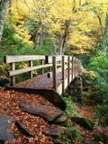 Forest Bridge Fotos de Stock Royalty Free