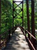 Forest Bridge Photo libre de droits