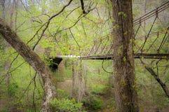Forest Bridge auf Natchez-Spur Stockfotografie