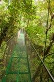 Forest bridge Stock Photos