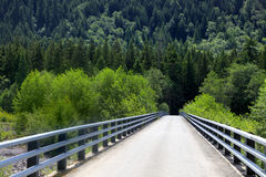 Forest bridge Stock Photography