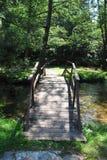 Forest Bridge Stock Images