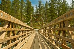 Forest bridge. Wooden bridge in forest during the spring Stock Image