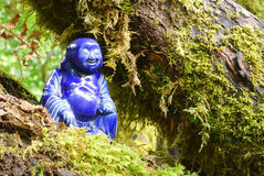 Forest Buddha Stock Photography