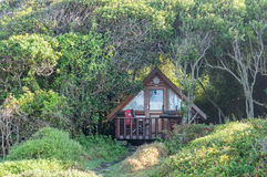 Forest cabin at Storms River Mouth Stock Image