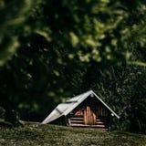 Forest Cabin Woods Image libre de droits