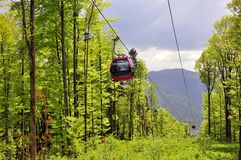 Forest cable car Royalty Free Stock Image
