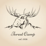 Forest camp logo Royalty Free Stock Images