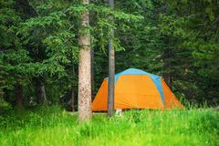 Forest Campground Tent royalty-vrije stock fotografie