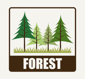 Forest camping design Royalty Free Stock Image