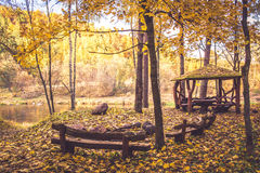 Forest camping resort Royalty Free Stock Images