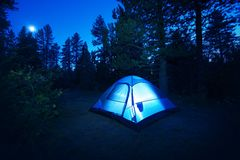 Forest Camping - Tent. Forest Camping - Small Illuminated Tent at Night. Camping in California Forest, USA. Camping and Outdoor Photo Collection royalty free stock images