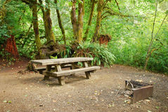 Forest Campsite. Picnic table and BBQ pit at a forest campsite in Oregon royalty free stock images