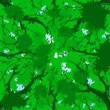 Forest canopy - summer. Illustration of a forest canopy in summer royalty free illustration