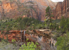 Forest Canyon Waterfalls Stock Photography