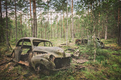 Forest car cemetery. Image of forest cemetery of old, rusty cars Stock Photography