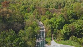 Forest car road bend stock footage