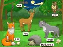 Forest with cartoon animals names Stock Image