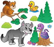Forest cartoon animals set 2 Royalty Free Stock Photos