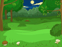 Forest cartoon educational game vector Stock Image