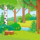Forest in cartoon style. Meadow and forest, nature landscape. stock illustration