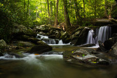 Forest cascade royalty free stock images