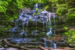 Forest Cascading Waterfalls Arkivfoto