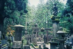 Forest cemetery at the top of the Mount Koya, Japan Royalty Free Stock Photo