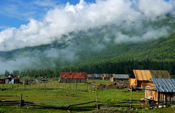 The forest and the chalet. The forest and the wooden houses in the morning Stock Photo