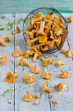 Forest chanterelle mushrooms in a basket Stock Photo