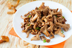 Forest chanterelle mushrooms on a white plate close-up Stock Photos
