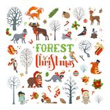 Forest Christmas Images stock