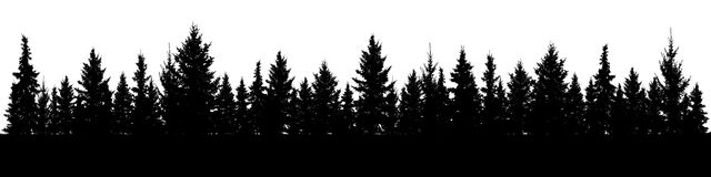 Forest of Christmas fir trees silhouette. Coniferous spruce panorama. Park of evergreen wood. Vector on white background Royalty Free Stock Photos