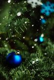 Forest Christmas tree branch with blue ornament. New year greeting background. Copy space. Stock Photos