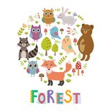 Forest circle shape background with cute fox, owls, bear, birds and raccoon Stock Images